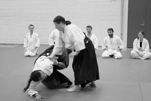 bsi-aikido-8114.jpg